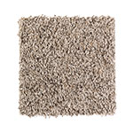 Organic Appeal Soft Taupe Carpet