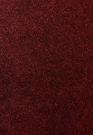 Unrivaled Burgundy Blush Carpet by Shaw