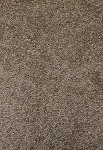 Attractive Style Shadow Taupe Carpet by Mohawk