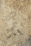 "Continental Slate -Desert Sands Ceramic Floor Tile 12"" x 24"""