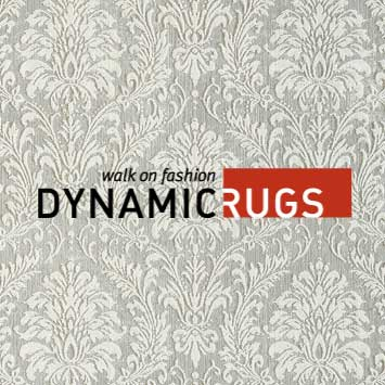 Dynamic Area Rugs