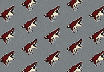 NHL Repeat C2032 Phoenix Coyotes