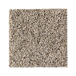 Limited Stock - Pure Harmony Sand Dollar Carpet