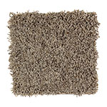 Limited Stock - Pure Harmony Tawny Branch Carpet