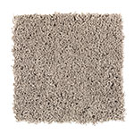 Limited Stock - Impressively Soft I Gazelle Carpet