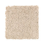 Limited Stock - Soft Glamour II Vanilla Steam Carpet