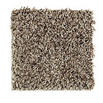 Limited Stock - Soft Choice I Brazilian Coffee Carpet