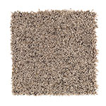 Limited Stock - Soothingly Soft II Cliffside Carpet