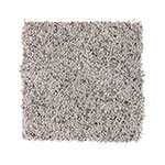 Limited Stock - Soothingly Soft II Gainsboro Carpet