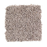 Limited Stock - Stylishly Soft II Studio Taupe Carpet