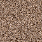 Limited Stock - Harmony II Accent Carpet