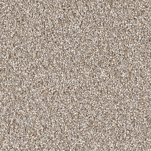 Montauk Iron Frost Multi Tone Carpet By Dreamweaver