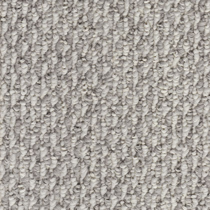 Starlight Ii Stellar Home Office Carpet By Southwind