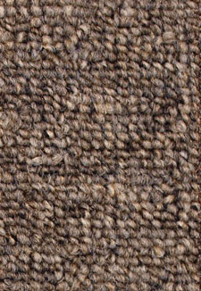 Sp020 Nickel Home Office carpet by Mohawk