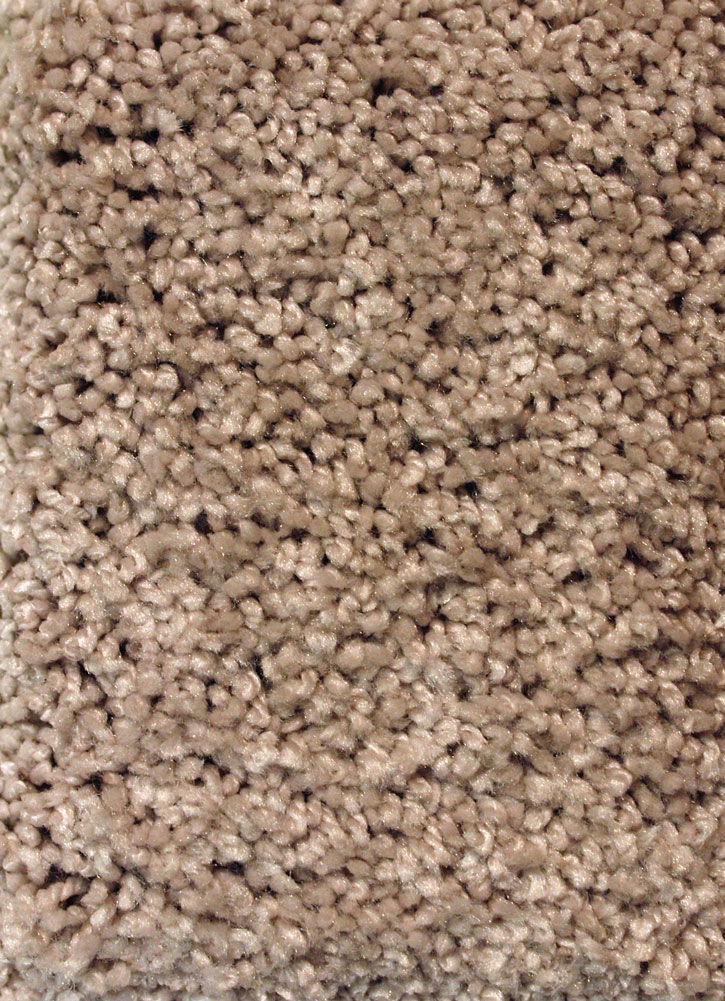 Truly Silk 16 S Texture Carpet By Mohawk