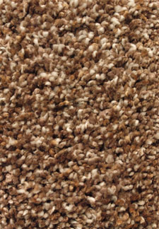 Truly Silk 06 (F) Multi Tone carpet by Mohawk