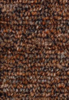 Rule Breakers 20 Chestnut Home Office carpet by Mohawk