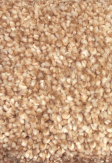 Montauk Sawgrass Multi Tone carpet by Dreamweaver
