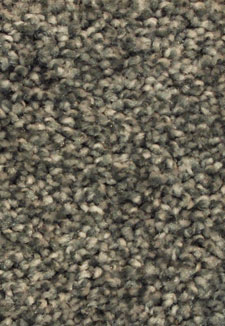Exceptional II Steel Grey Multi Tone carpet by Dreamweaver
