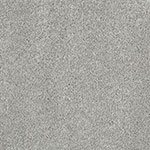 Limited Inventory - Delicate Finesse Classic Grey Carpet by Karastan