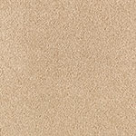 Limited Inventory - Edgy Chic Light Fawn Carpet by Karastan