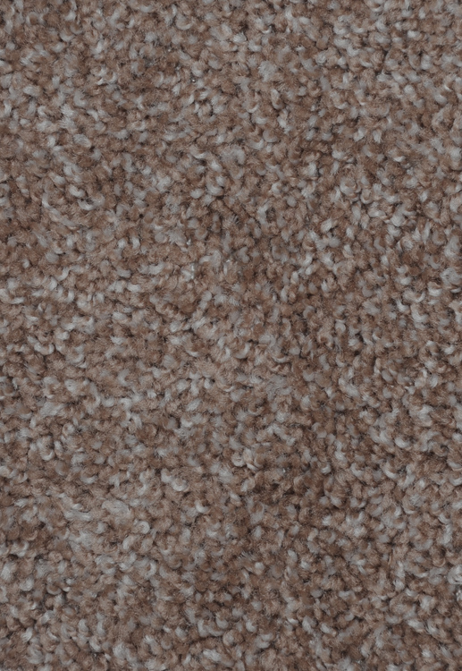 Dynamic Energy Mesquite Chip Saxony Texture Carpet