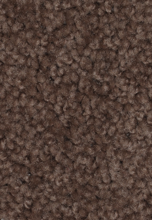 Inviting Gaze Arrowhead Saxony Texture Carpet