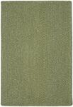 Capel Rugs Heathered 0050-200 Sage Green Area Rug