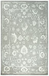 Dynamic Rugs Avalon 88800-900 Silver Ivory Area Rug