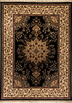 Dynamic Rugs Brilliant 7201-090 Black Area Rug
