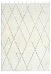 Dynamic Rugs Celestial 6951-109 Ivory/Grey Area Rug