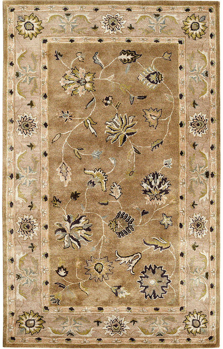 Dynamic Rugs Charisma 1406-419 Light Green Area Rug
