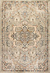 Dynamic Rugs Evolution 4770-510 Light Gray Area Rug