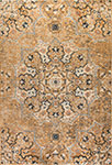 Dynamic Rugs Evolution 4772-110 Tan Area Rug