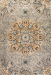 Dynamic Rugs Evolution 4772-510 Light Gray Area Rug
