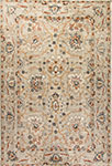 Dynamic Rugs Evolution 4773-510 Light Gray Area Rug