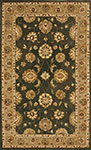 Dynamic Rugs Jewel 70230-444 Green Area Rug