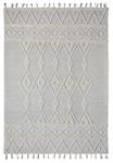 Dynamic Rugs Liberty 2132-190 Lt. Grey Area Rug