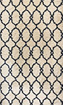 Dynamic Rugs Passion 6201-108 Ivory Area Rug