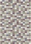 Dynamic Rugs Eclipse 63339-6111 Multi 2'2