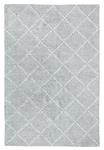 Dynamic Rugs Zest 40809-909 Silver Area Rug