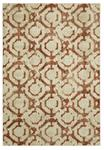 Karastan Expressions 91823-20048 Motif Ginger by Scott Living Area Rug