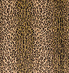 Nourison 50 to Infinity - Grand Parterre Parth Wild Safari VA03 Multi-B Area Rug