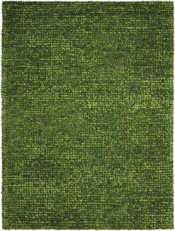 Nourison Fantasia FAN1 Green Area Rug