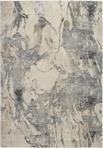 Nourison Fusion FSS16 Cream/Grey Area Rug