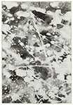 Oriental Weavers Evolution 8035B Charcoal/ White Area Rug