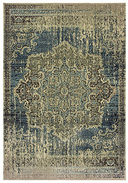 Oriental Weavers Raleigh 6649H Area Rug