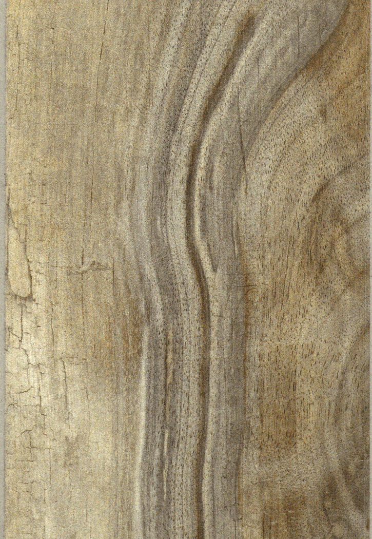 "Living Wood Tortora Grey Porcelain Floor Tile 6"" x 39"""