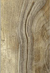 Living Wood Tortora Grey Porcelain Floor Tile 6
