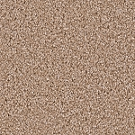 Exceptional II Sawgrass Multi Tone carpet by Dreamweaver